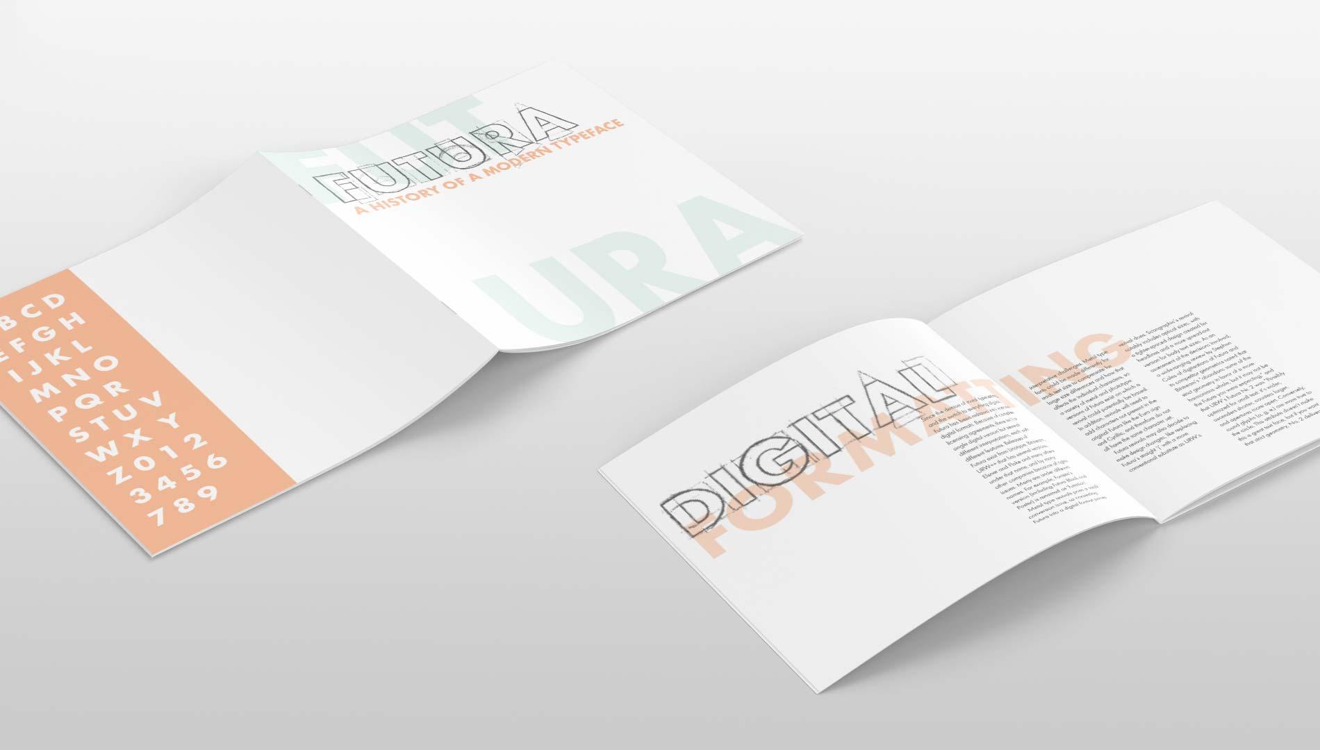 rachel_baumgartner_brochure3